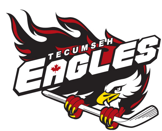 Logo for Tecumseh Minor Hockey