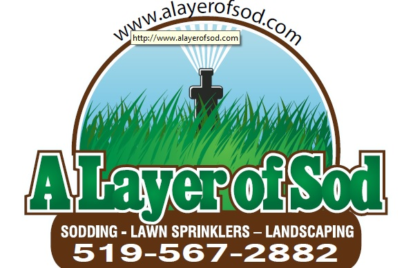 Alayer of Sod
